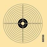 Schietschijf 12-Rings 14x14cm