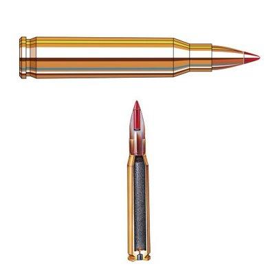 Hornady V-Max 55grn .223Rem (20 stuks)